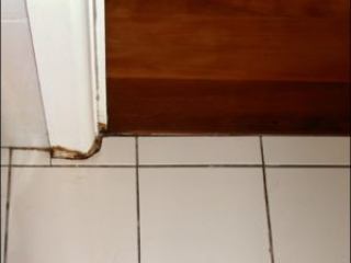 Architrave damage from moisture