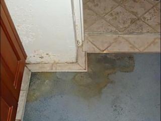 Shower water wetting carpet and brickwork